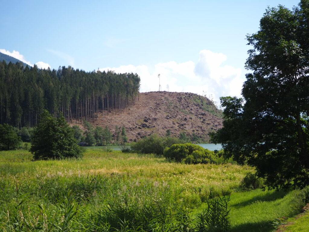 Paesaggio soleggiato senza alberi
